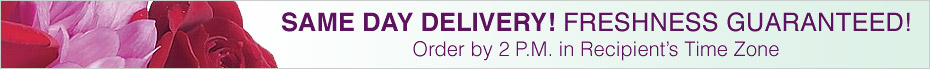 Same Day Delivery! Freshness Guaranteed!